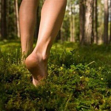 Meditiamo i piedi