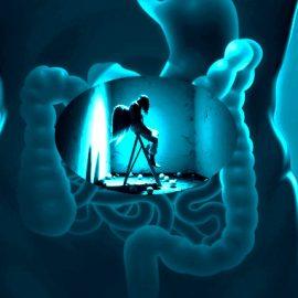 Meditiamo l'intestino